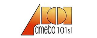 electroerosion-ameba101